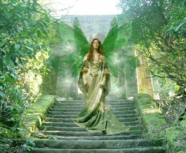 Vert  .... belle image  .. fée