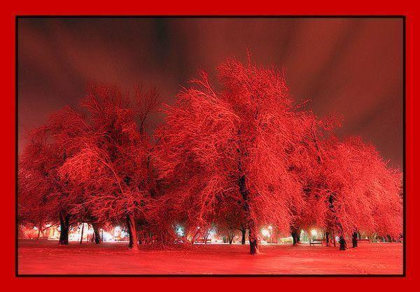 Rouge ... Belle image .. Paysage