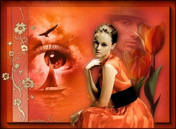 Orange  .... Belle image