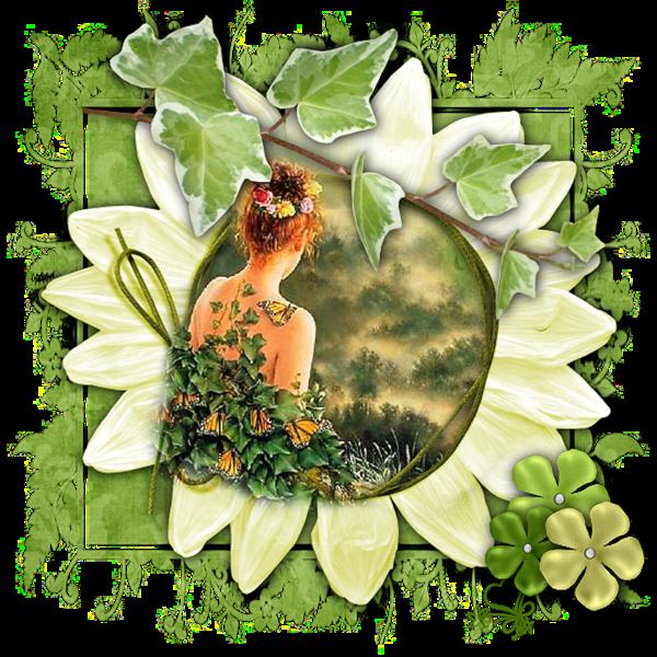 Vert ... bellle image