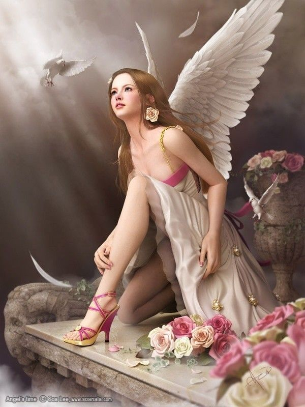 Rose .. ange