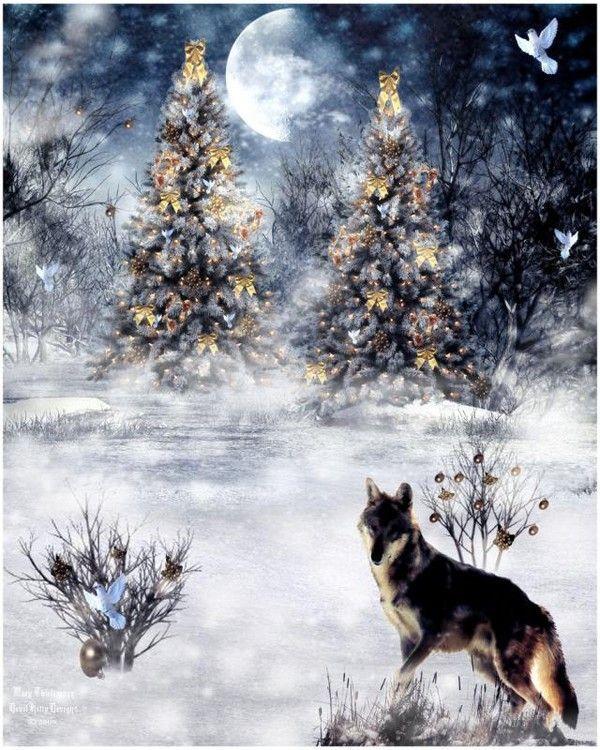 Noël en bleu ...