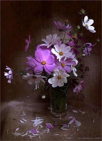 mauve ... bouquet