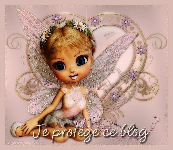 Je protège ce blog  ......