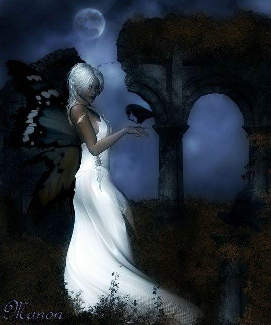 Nuit ... Lune  ... Rêveries ..