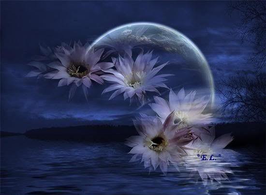 Bleu  ... fleurs