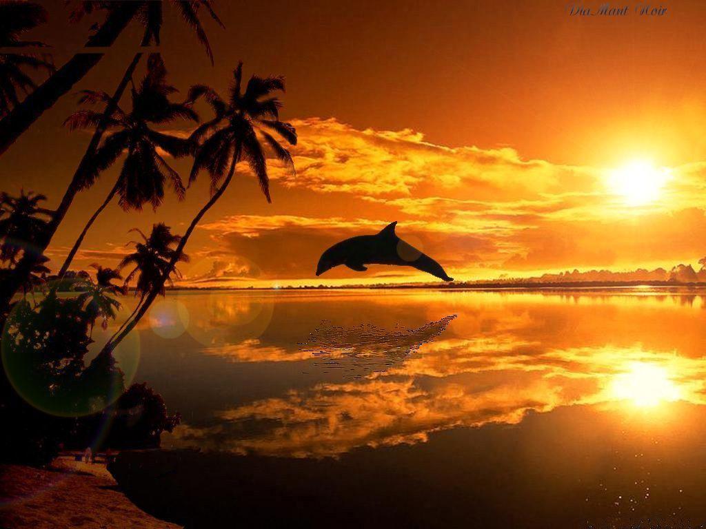 Un coucher de soleil - Lever et coucher du soleil est ouest ...