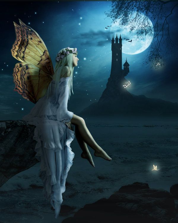 Nuit ... Lune ... Rêveries