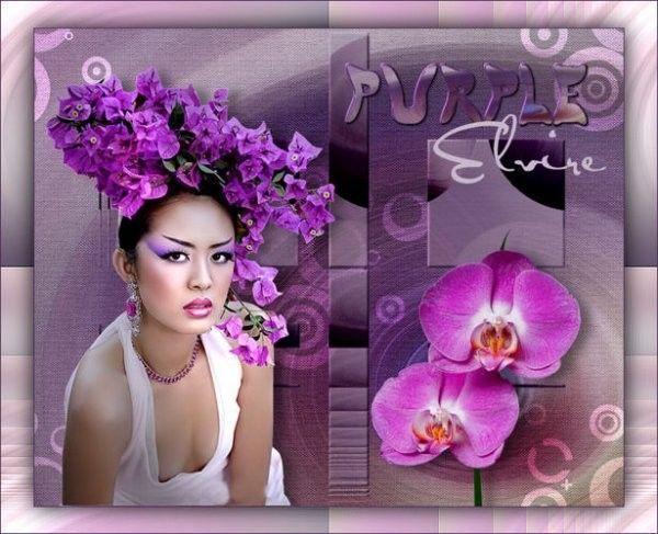 Mauve .. Violet ... Belle image
