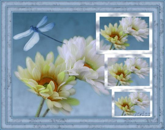 Bleu ... cadre fleurs