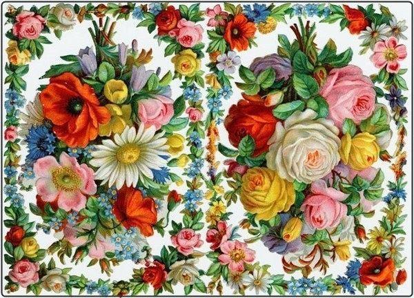 Colorido .. Fleurs