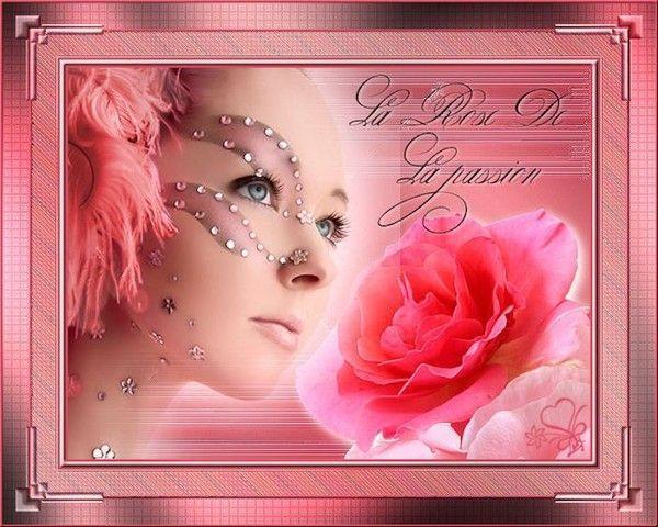 Rose ... Belle image