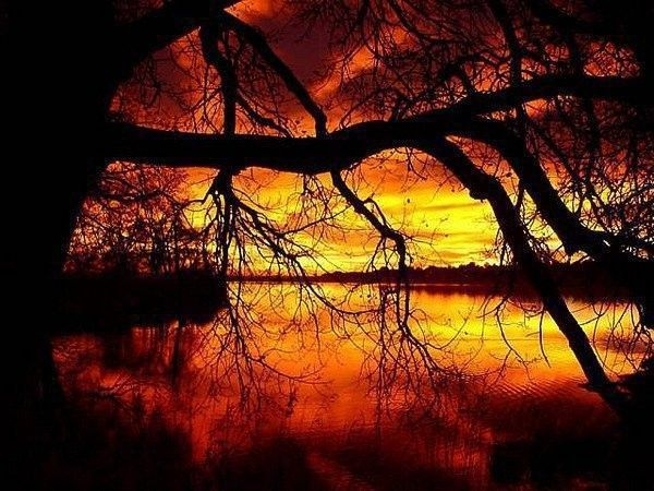 Orange  ... paysage