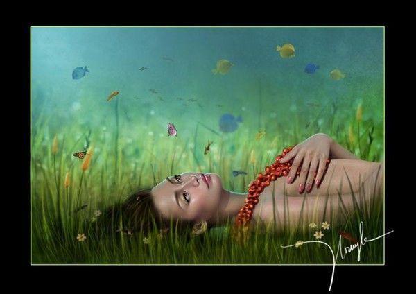Belle image ... rêverie