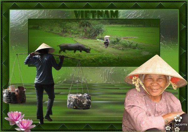 Pays Divers ... Direction Vietnam