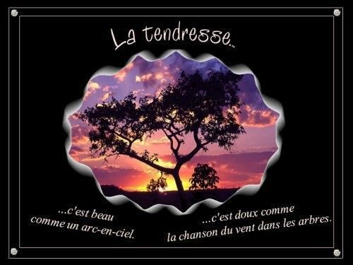 Citation ... la tendresse