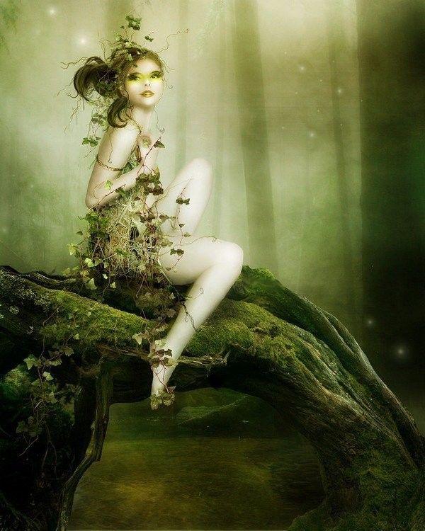 Vert ... belle image