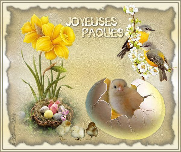 Pâques .. Belle image