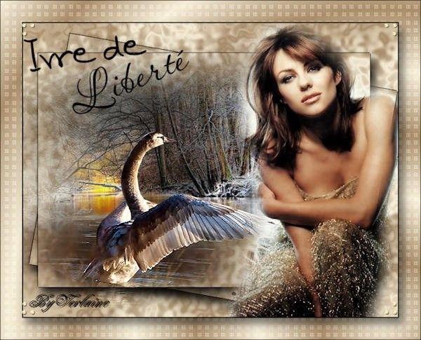Marron ... Belle image
