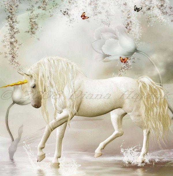 Imaginaire ..... Licorne