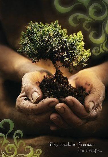 Terra  ... le Monde est précieux ...