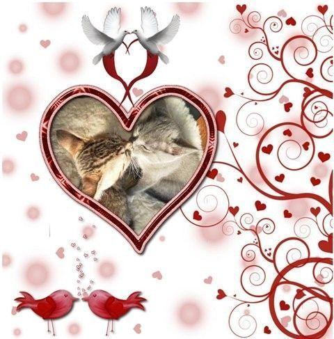 St-Valentin ...