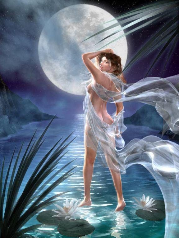 Nuit  ... Lune  ...  Rêverie