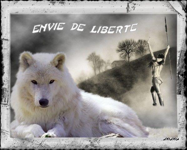 Loup ...