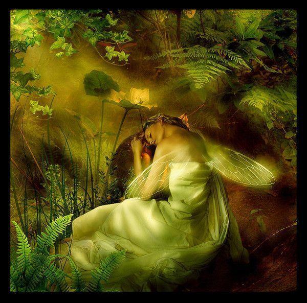 Vert ... fée endormie