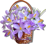Fleur .. mini