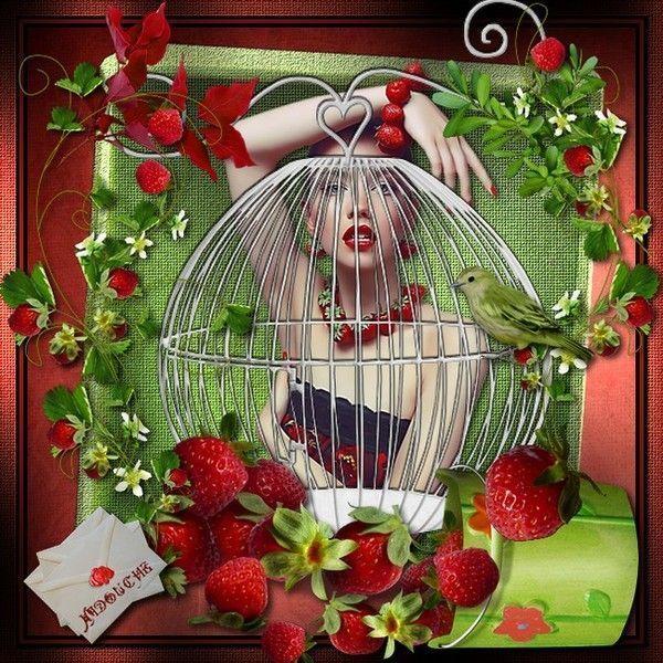 Miam ... Fruit  ... Fraises  ... Belle image