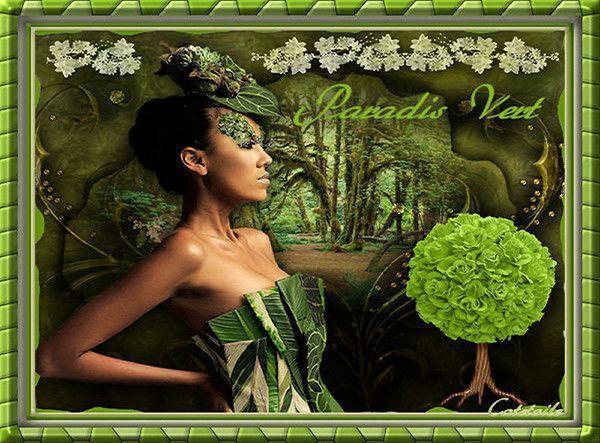 Vert ... Belle image chez mon amie Catestrelia