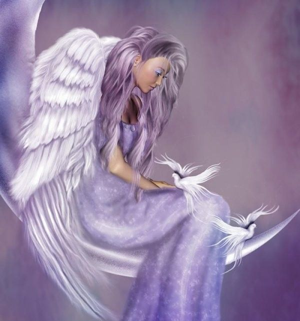 Mauve ... Belle image  ange