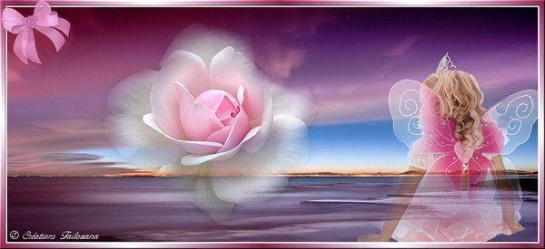 Belle image ... rêverie  ...