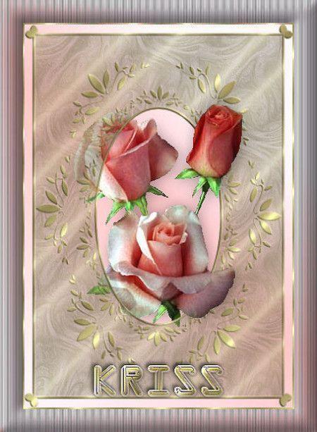 Rose ... fleurs