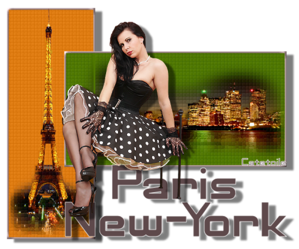 Pays  ... Destination  Paris New-York ...