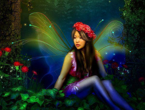 Colorido ... Belle image  ... Fée