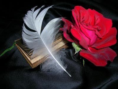 Blog de corine : qui ne tente rien, n'a rien !, En l'honneur de tous les écrivains de la plate forme !!!!!!!!!!!!  L'ENCRIER !