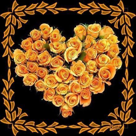 Orange ... coeur en roses