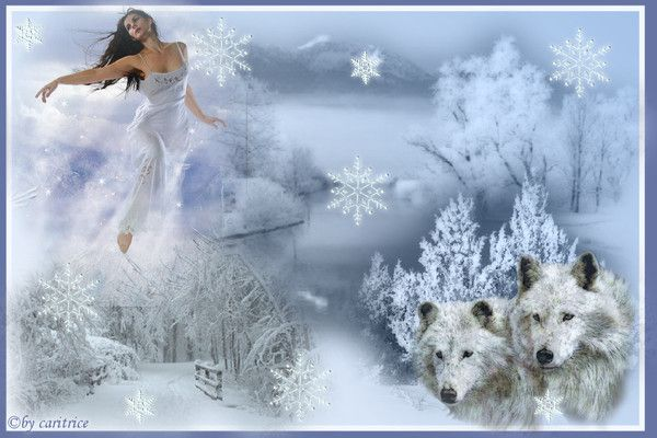 Hiver ... Belle image