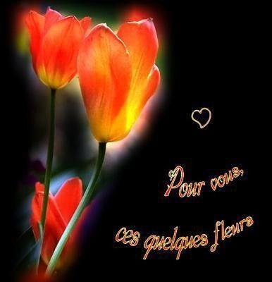 Réconfort ... des fleurs pour vous