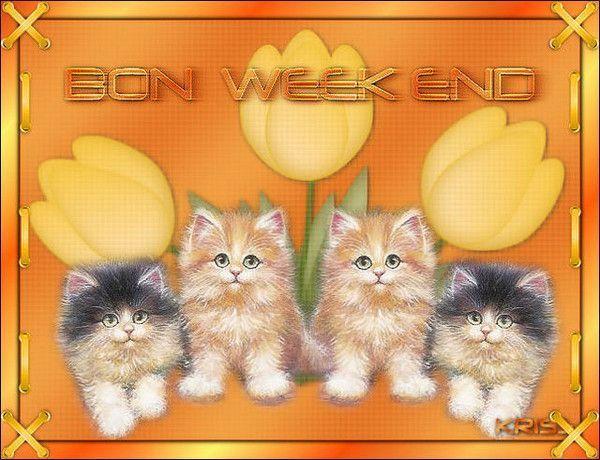 Bon week-end à Toutes et Tous ...