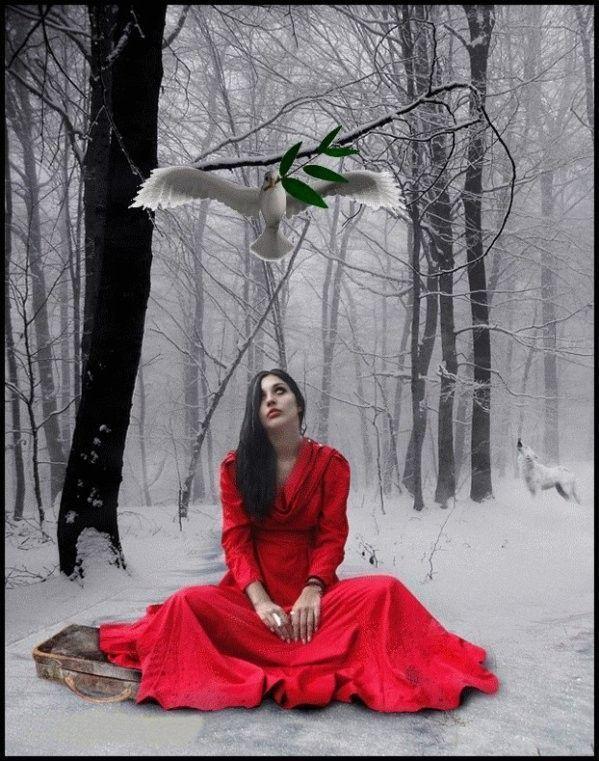 Hiver .. en rouge  ... Belle image