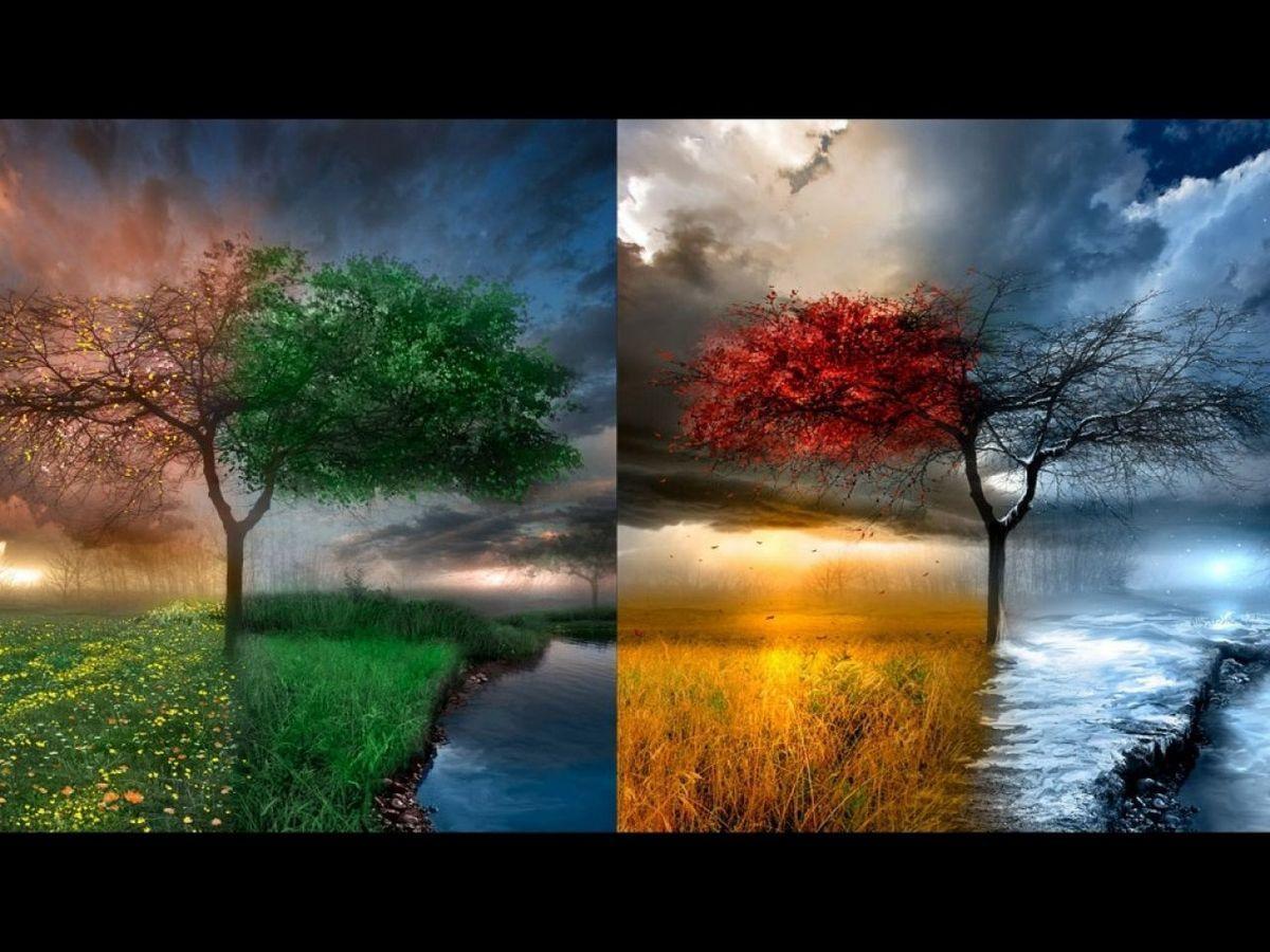 Nos quatre saisons... - L'Unité